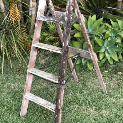 five step rustic ladder